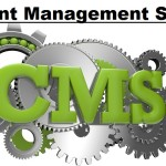 Guidelines to Choose the Right CMS for Your Online Business